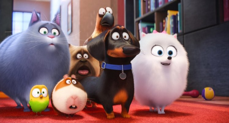 THE SECRET LIFE OF PETS, from left: Chloe (voice: Lake Bell), Sweetpea, Norman, Mel (back, voice: